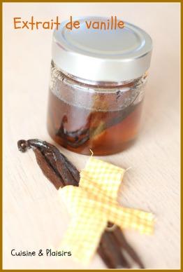 Extrait de vanille maison